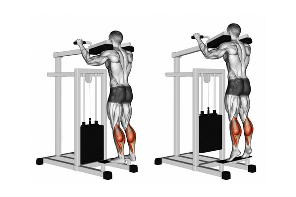 standing calf raises exercise instructions in illustration