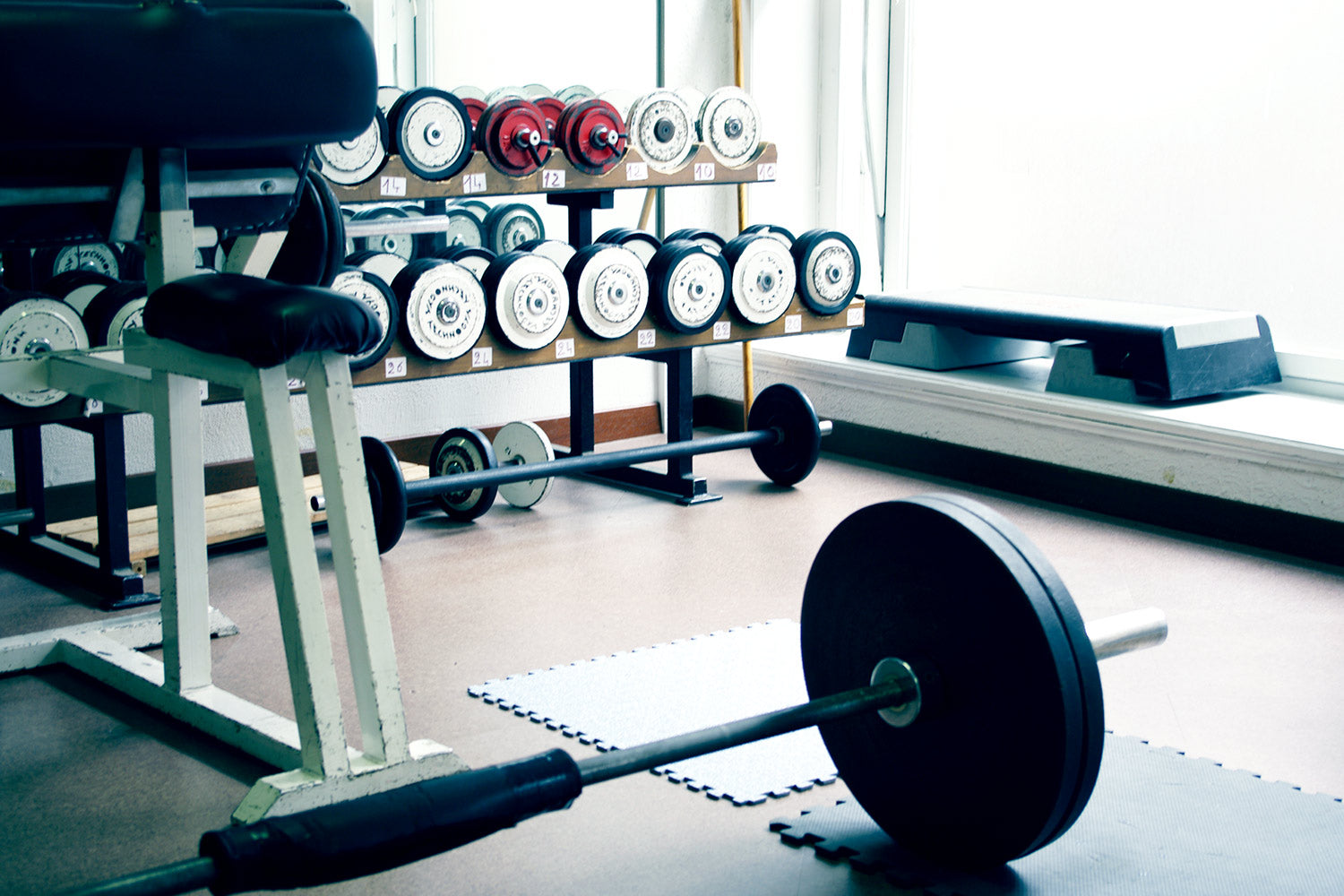 Things you need for the perfect home gym