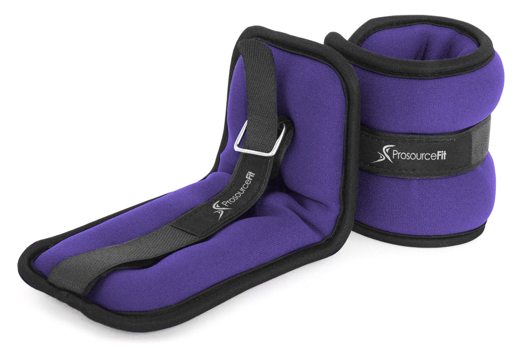 Ankle Weights 2.5 lb