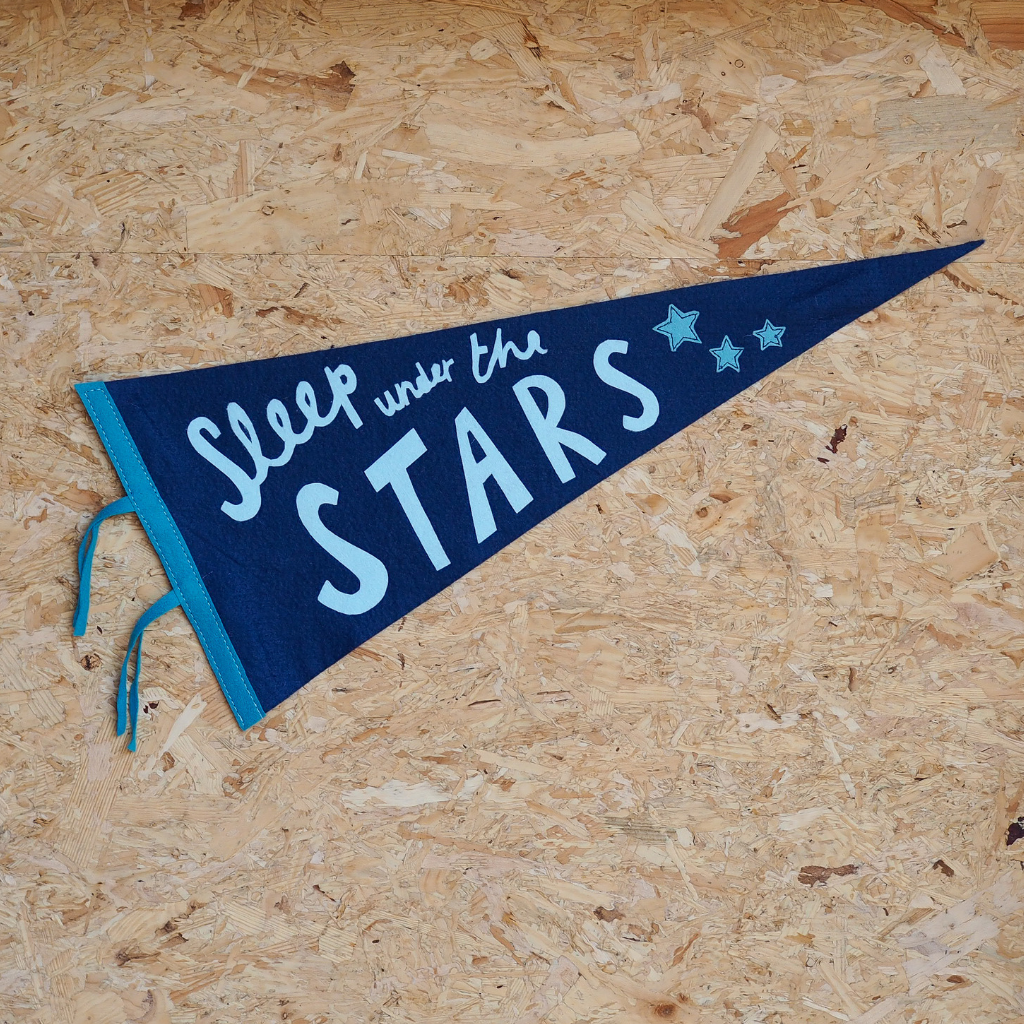 Sleep Under The Stars Pennant Flag
