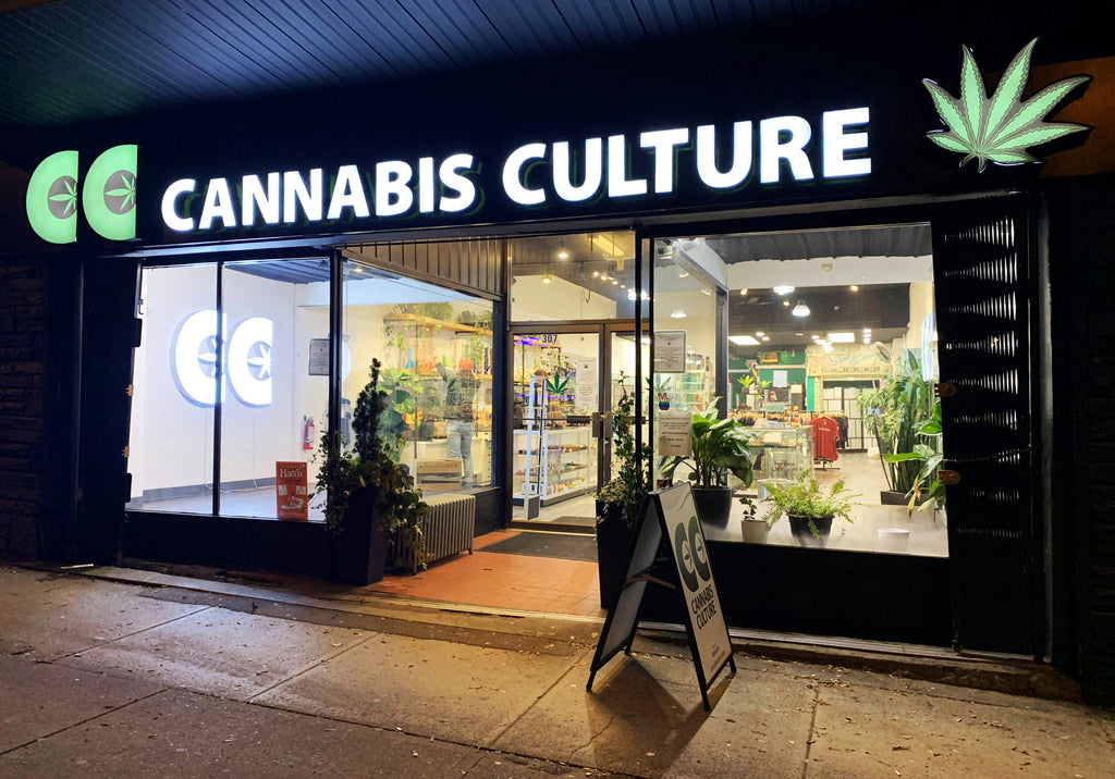 Cannabis Culture Headquarters in Vancouver BC