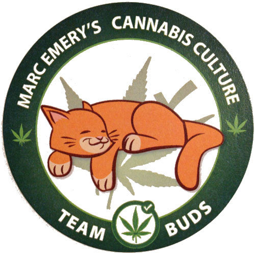Team Buds the Cat Sticker