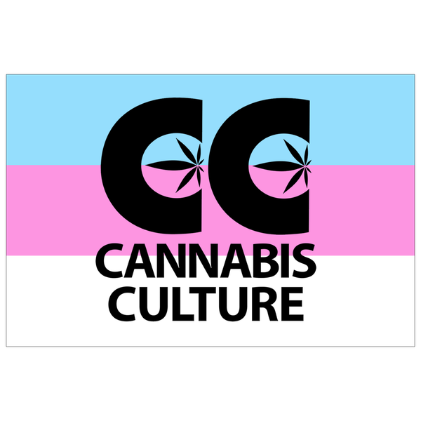 Cannabis Culture Trans Pride Sticker