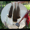 Shamanic Drum with calf raw hide
