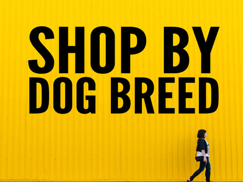 Shop by dog breed