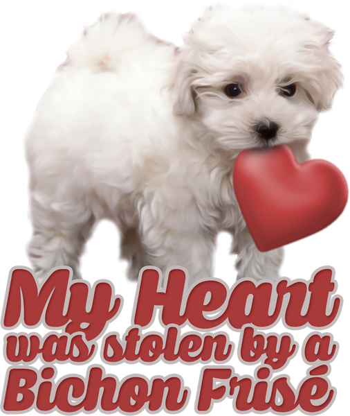 My heart was stolen by a bichon - dog necklace - dog necklaces - dog stuff - Dogs Make Me Happy