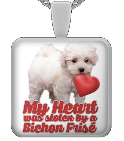 My heart was stolen by a bichon - dog necklace - dog necklaces - dog stuff - Dogs Make Me Happy - 1