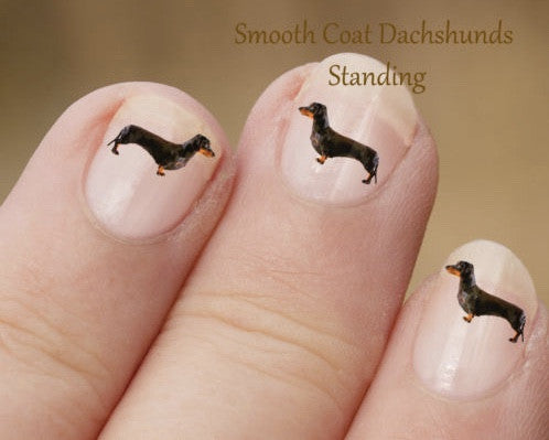 Dachshund nail art - Dogs Make Me Happy