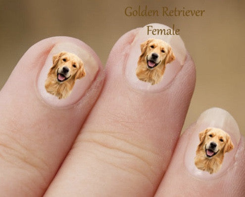Golden Retriever Nail Art - Dogs Make Me Happy
