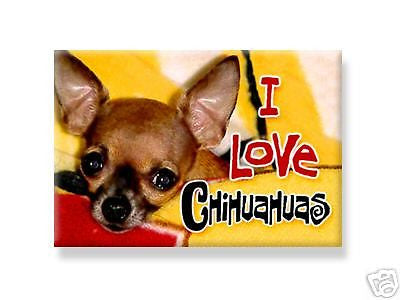 I love chihuahuas magnet - Dogs Make Me Happy