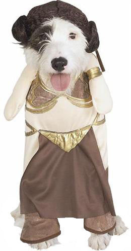 Princess Leia dog costume - Dogs Make Me Happy