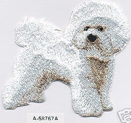 Patch - bichon frise - Dogs Make Me Happy