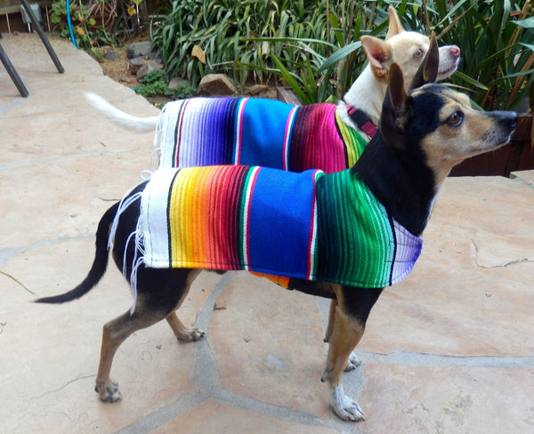 Handmade dog poncho - Wear as costume or for warmth - Dogs Make Me Happy - 4