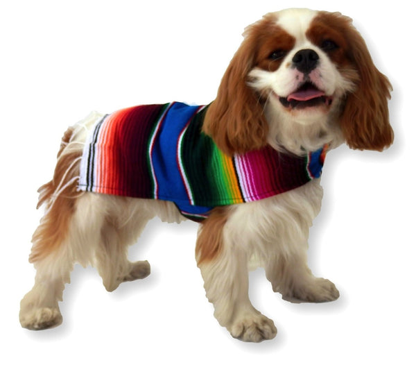Handmade dog poncho - Wear as costume or for warmth - Dogs Make Me Happy - 6