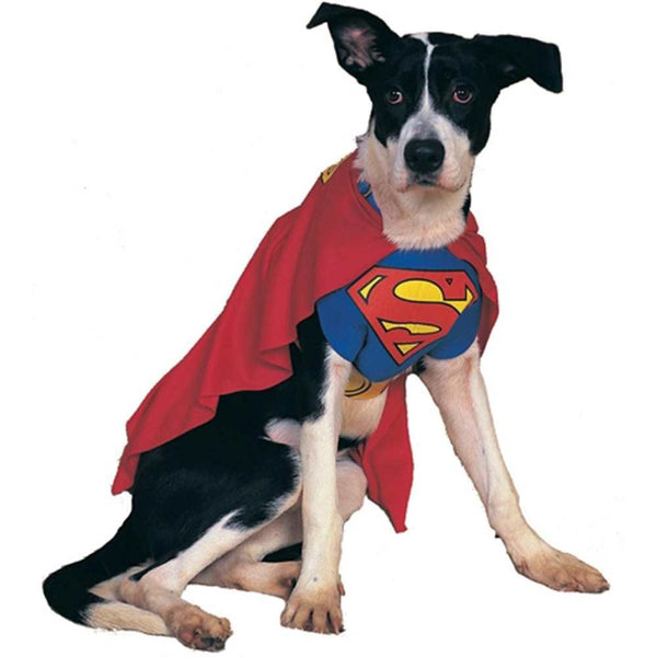 Superman dog costume - Dogs Make Me Happy - 1