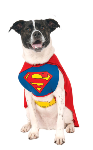 Superman dog costume - Dogs Make Me Happy - 2