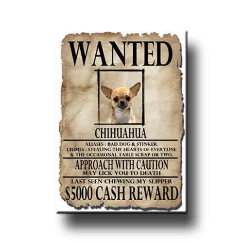 Wanted chihuahua magnet - Dogs Make Me Happy