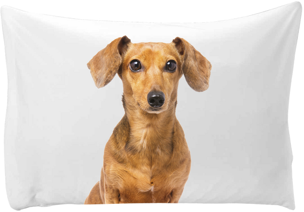 Personalized pillow case - hand printed - Dogs Make Me Happy - 5