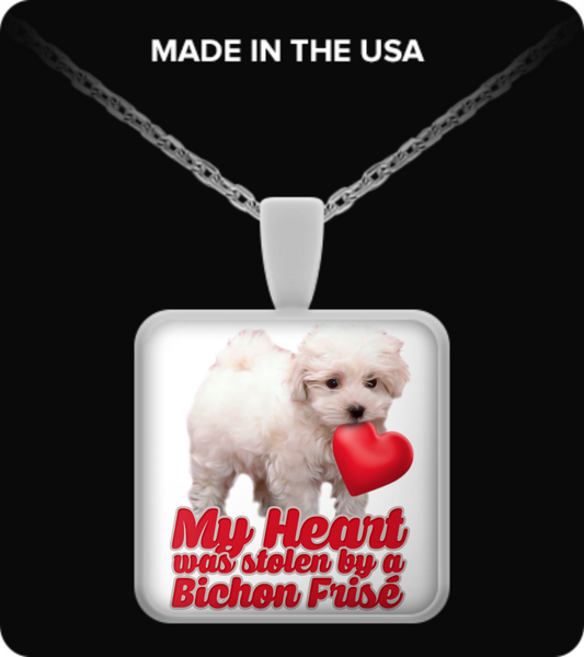 My heart was stolen by a bichon - necklace - Dogs Make Me Happy - 2