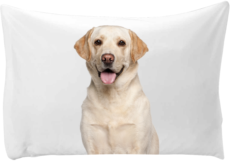 Personalized pillow case - hand printed - Dogs Make Me Happy - 8