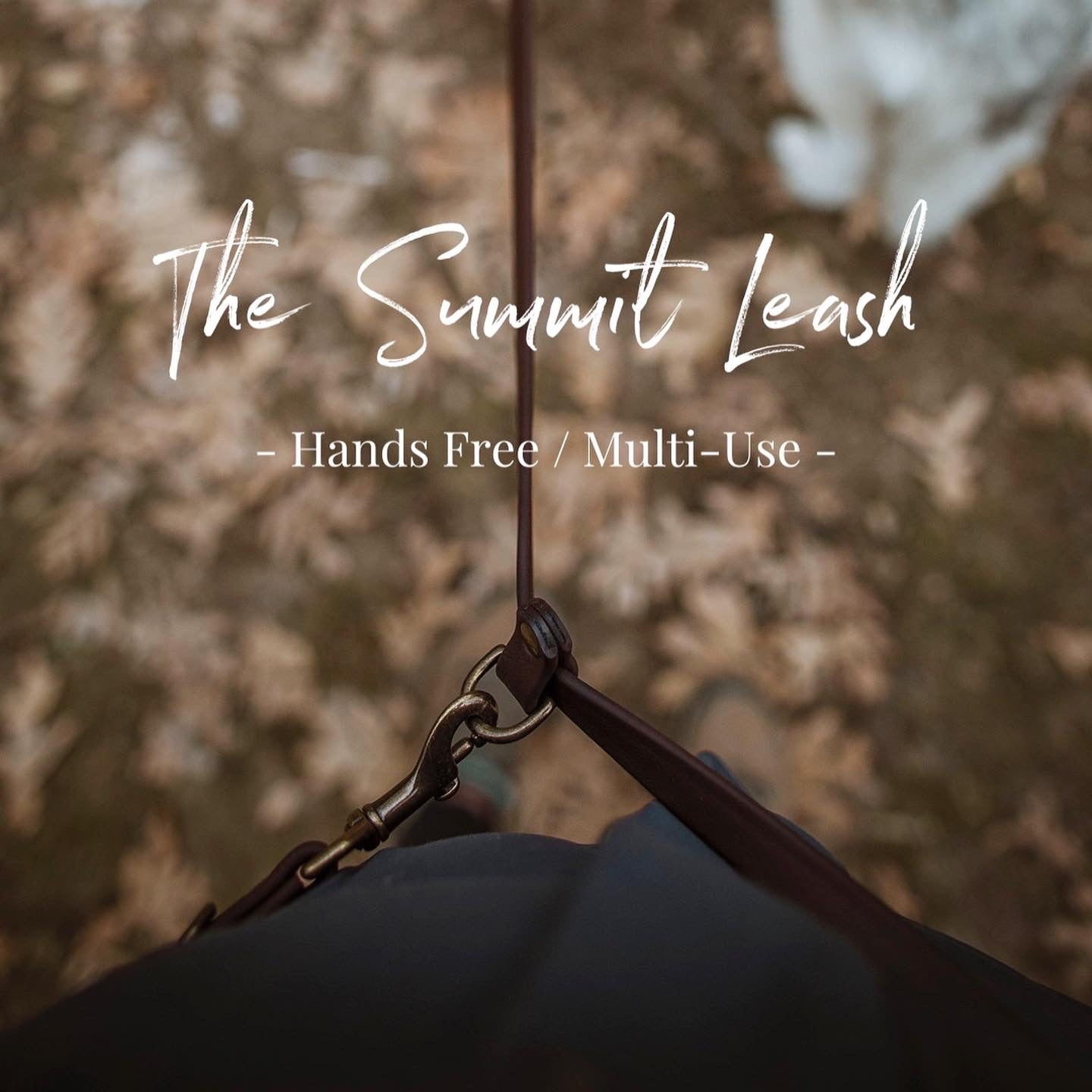 The Summit Leash / All-in-one + Hands Free - Solid Color