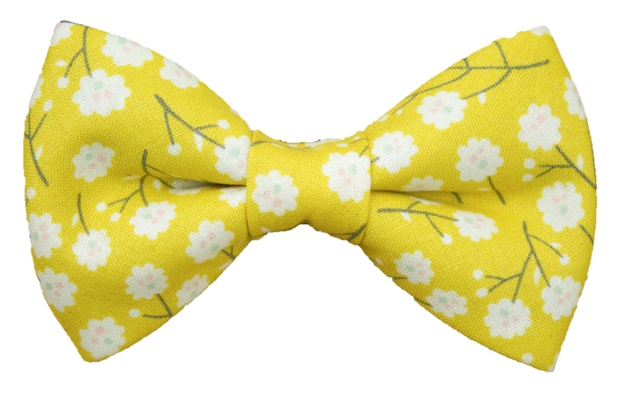 Floridian Fields Bow Tie