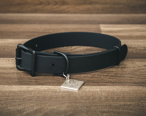 Onyx Jett Buckle Collar