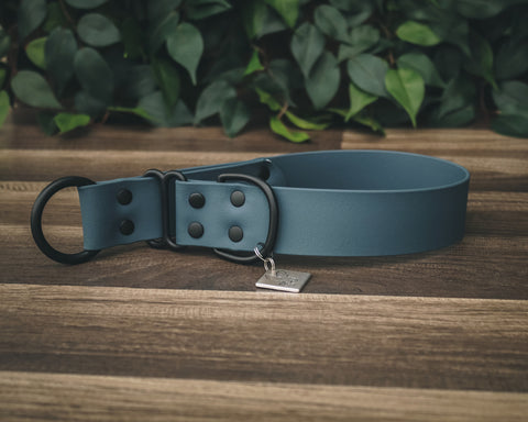 Onyx Slate Blue Buckle Collar 1.5""