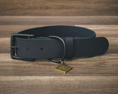 Onyx Jett Buckle Collar 1.5""