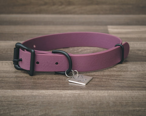 Onyx Plum Buckle Collar