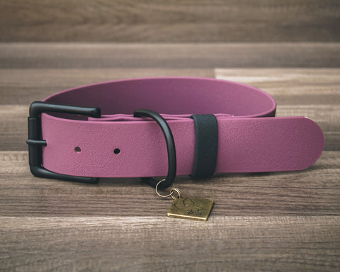 Onyx Plum Buckle Collar 1.5""