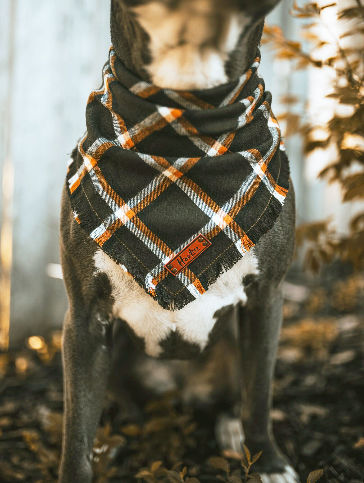 Timber Frayed Bandana