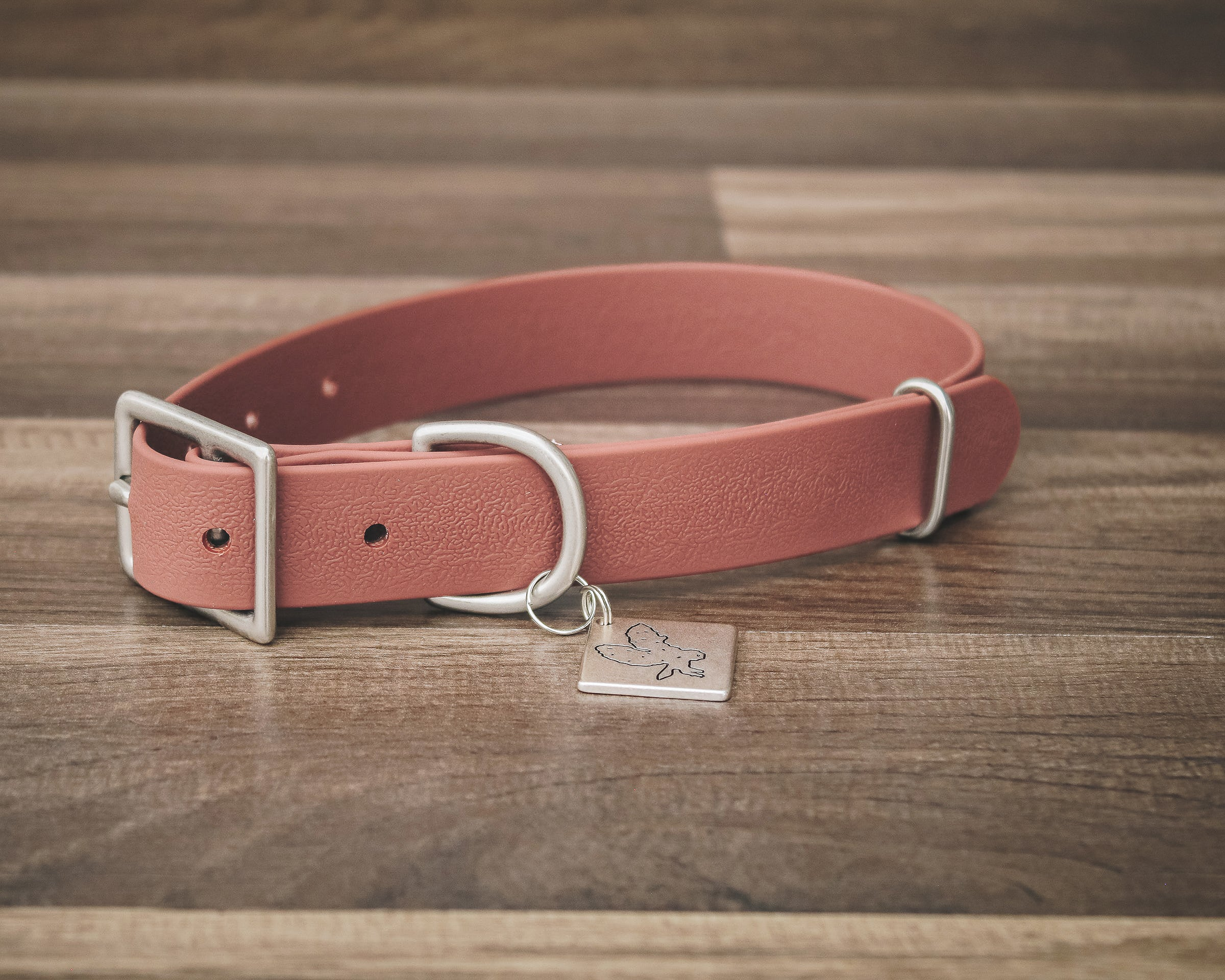 Sienna Buckle Collar