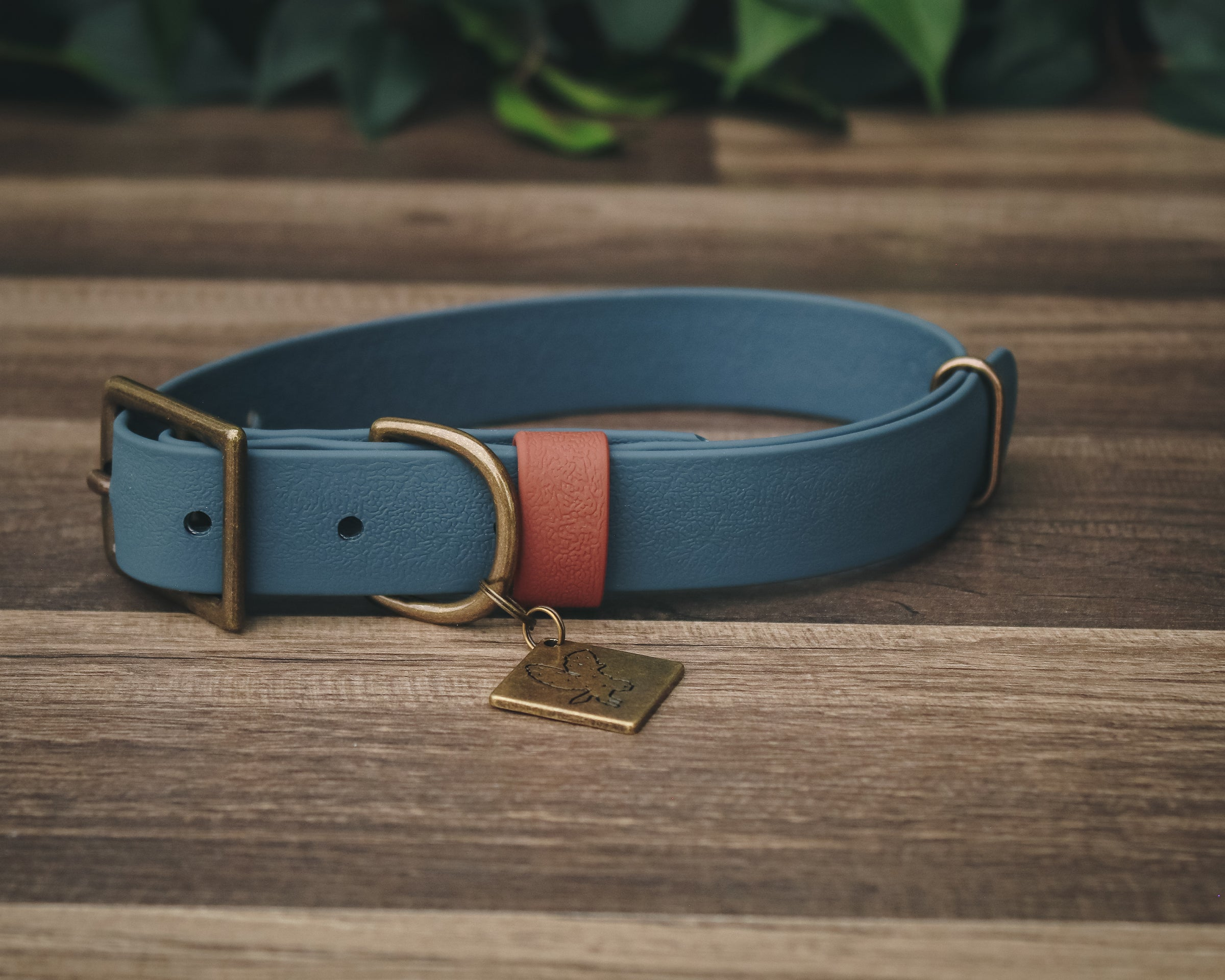 Onyx Olive Buckle Collar