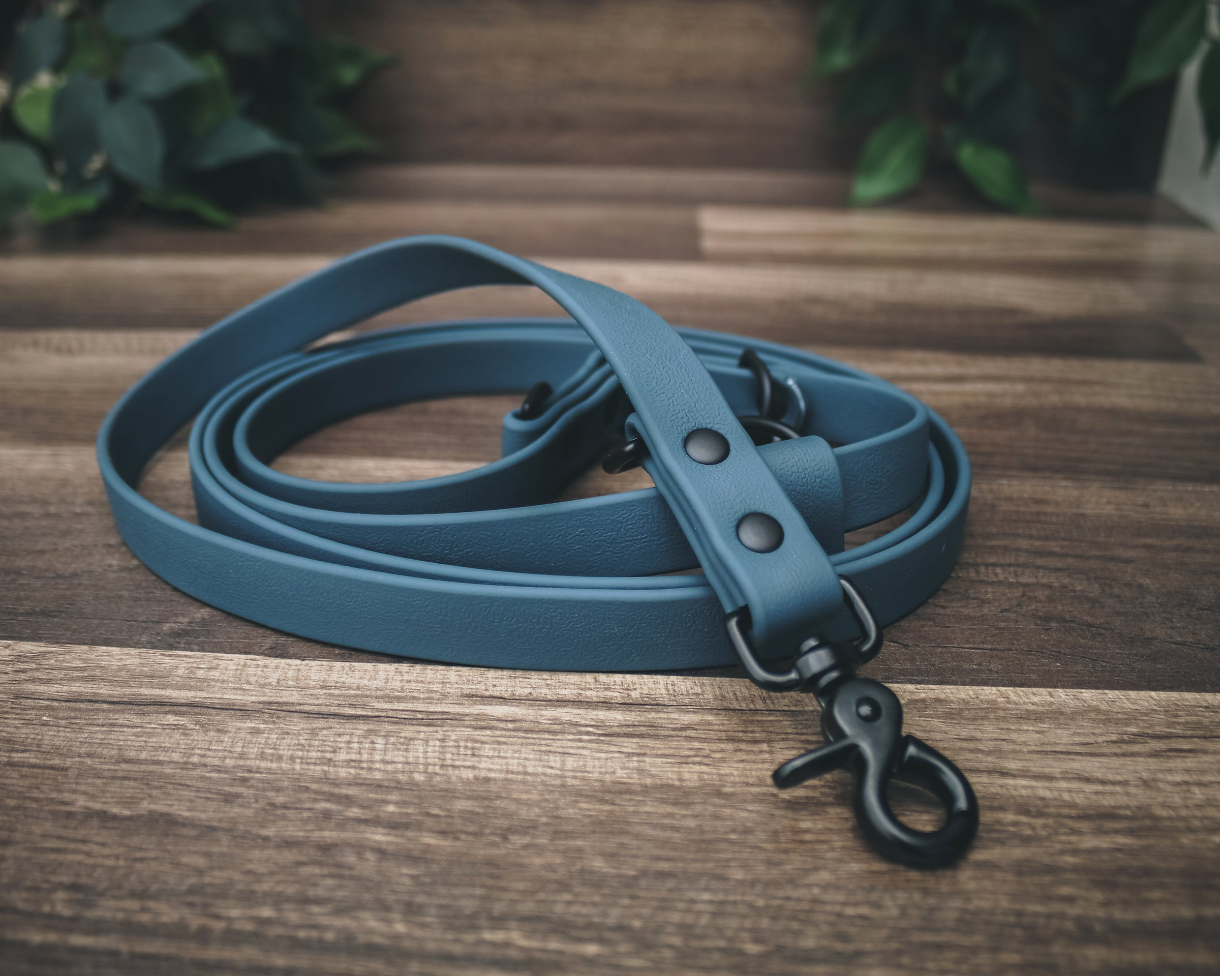 The Onyx Summit Leash / All-in-one + Hands Free - Solid