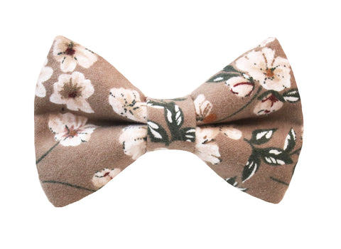 Lani Floral Bow Tie - Taupe