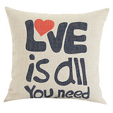 Love Is All You Need Pillow