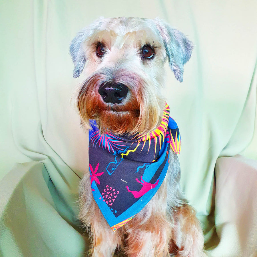 Binary Style x Daniel Boey Dog Bandana: #SingaporeRescues