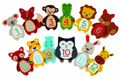 Pearhead HK Sale First year Belly Stickers - BabyPark HK
