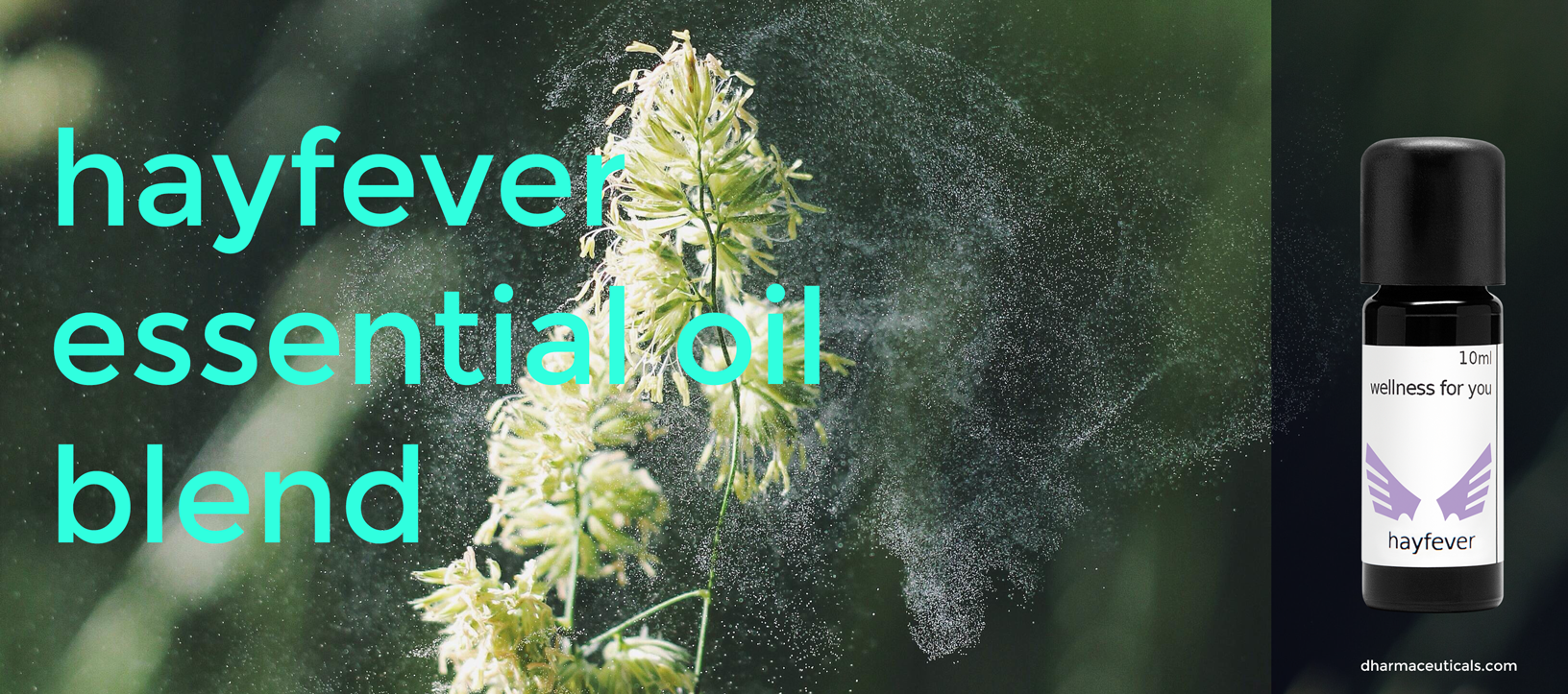 Essential Oil Blends for Asthma and Hay Fever
