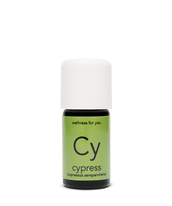Cypress Essential Oil - Aurelia Essential Oils®