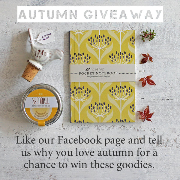 Mimosa Street's autumn giveway on Facebook