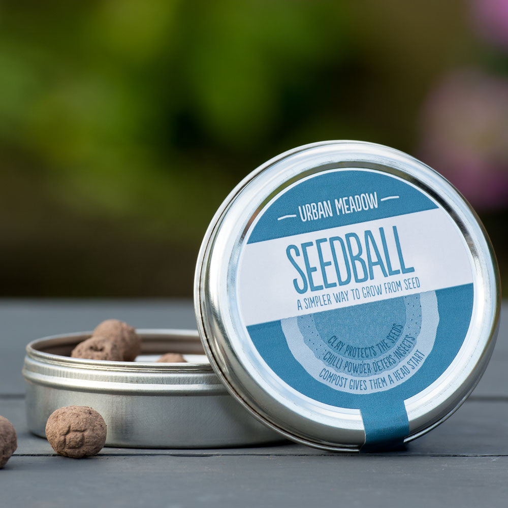 Urban meadow seed ball tin