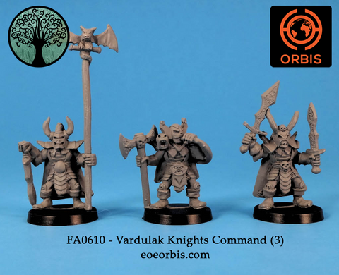 FA0610 - Vardulak Knights Command (3)