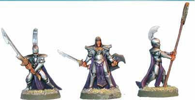 Shadow Elf Lords (3)