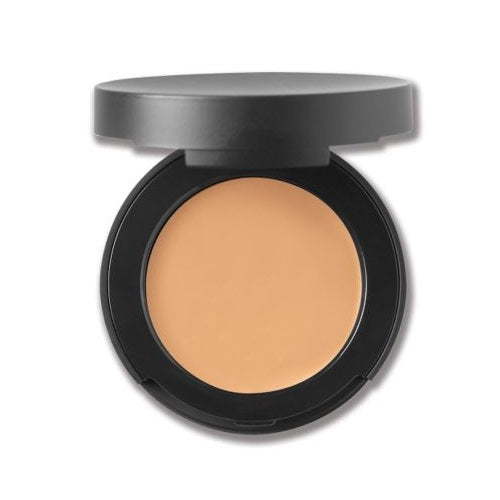 Bare Minerals Correcting Spf 20 Concealer