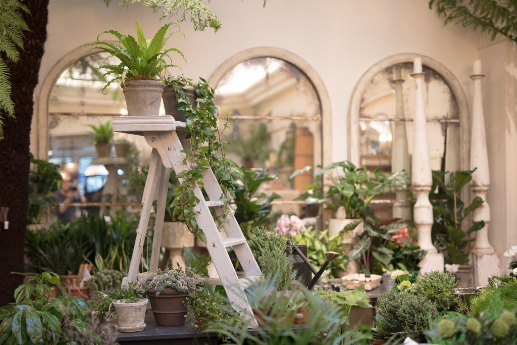 Petersham Nurseries in Covent Garden