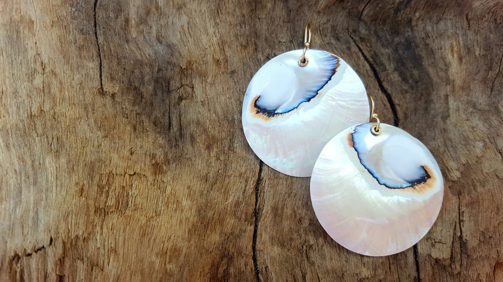 Nautilus shell and gold dangle earrings for those with mermaid souls