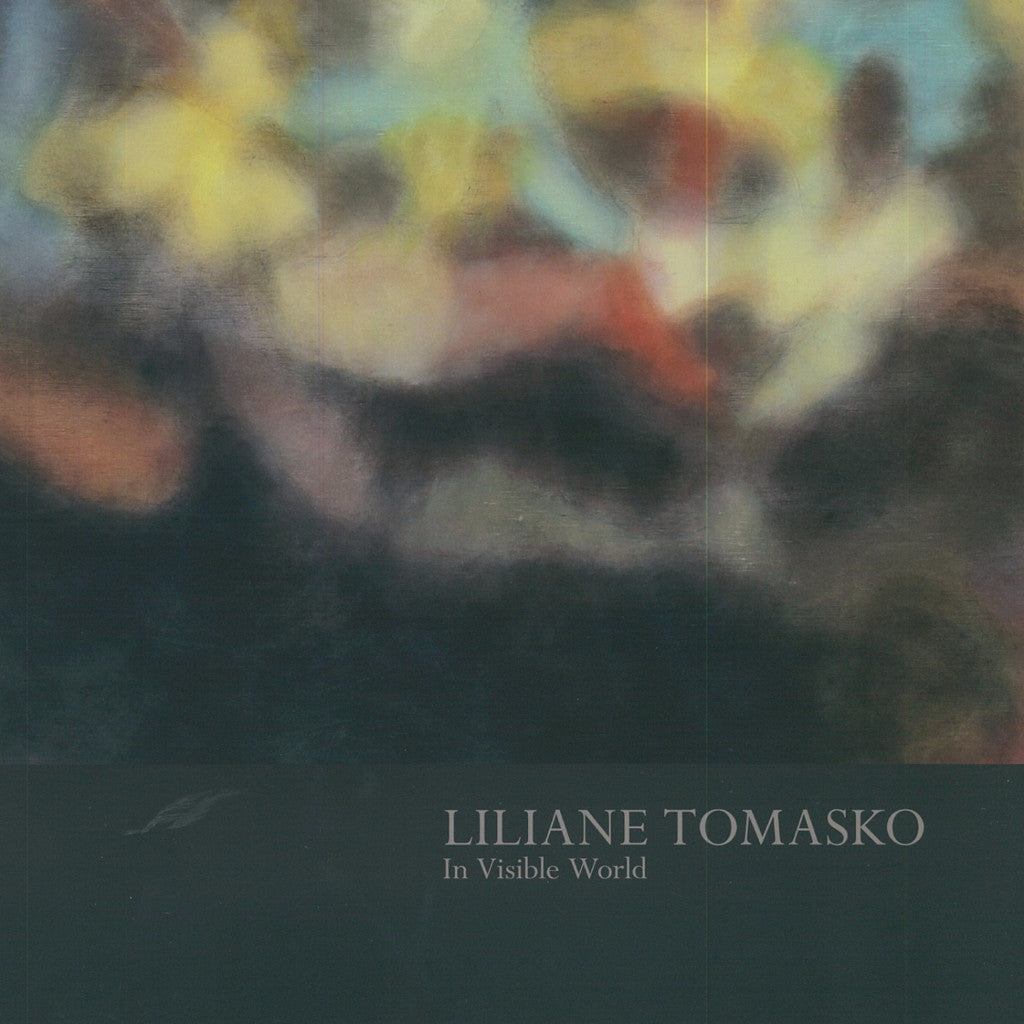 Liliane Tomasko: In Visible World