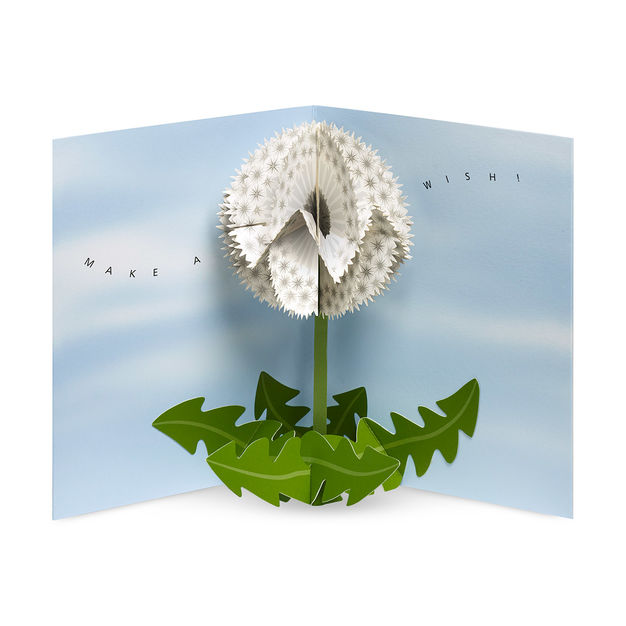 Dandelion Wishes 3D Pop Up Greeting Card